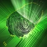 Fingerprint20in20criminal20case.9395114_std